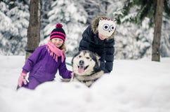 Cão e crianças fotografia de stock