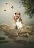 Cão e gato imagem de stock royalty free