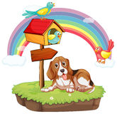 Cão e pássaros Fotos de Stock