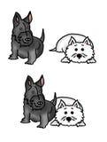 Cão e Westie do Scottie Imagens de Stock