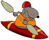 Cão em um caiaque vermelho Fotografia de Stock Royalty Free