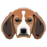 Cão em um fundo branco Vetor Foto de Stock Royalty Free