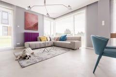 Cão em um interior da casa Fotos de Stock Royalty Free