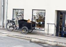 Cão em um proprietário de espera da cesta da bicicleta fotos de stock royalty free
