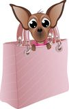Cão em uma bolsa glamoroso Fotos de Stock Royalty Free