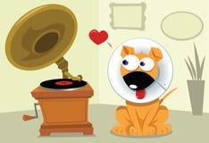 Cão engraçado e Grammophone Foto de Stock Royalty Free