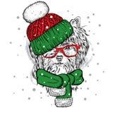 Cão engraçado em um chapéu e em um lenço do inverno ` S do ano novo e Natal Filhote de cachorro bonito ilustração royalty free