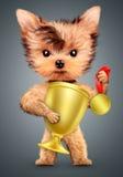 Cão engraçado que guarda a medalha e o copo de ouro Fotos de Stock Royalty Free
