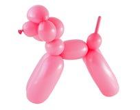 Cão feito com um balão isolado no branco Imagem de Stock Royalty Free