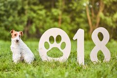 Cão feliz adorável do terrier de raposa no greetin do ano novo do parque 2018 imagens de stock