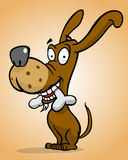Cão feliz com osso ilustração stock