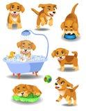 Cão feliz que faz atividades diferentes Ilustração Royalty Free