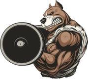 Cão feroz forte Imagens de Stock