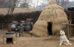 Cão fora na cabana da palha Imagem de Stock Royalty Free