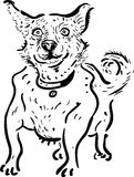 Cão, ilustração Foto de Stock