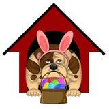 Cão inglês de Bull com o Headband do coelho de Easter ilustração royalty free