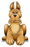 Cão irritado ilustração royalty free