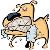 Cão louco ilustração stock