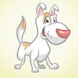 Cão marrom de sorriso de bull terrier Cão do vetor Foto de Stock