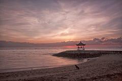 Cão na praia no alvorecer Fotografia de Stock Royalty Free