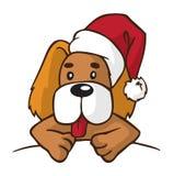 Cão no chapéu do ano novo Foto de Stock