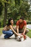 Cão petting dos pares. Imagens de Stock Royalty Free
