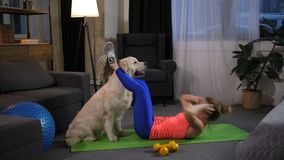 Cão que ajuda a triturações foing do proprietário fêmea em casa video estoque
