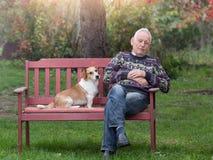 Cão que consola o homem Imagens de Stock