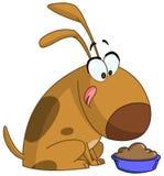 Cão que prepara-se para comer Imagem de Stock Royalty Free