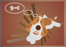 Cão que sonha sobre o bonelet Imagem de Stock Royalty Free