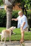 Cão que treina 06 Imagem de Stock Royalty Free
