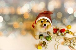 Cão que veste o chapéu de Papai Noel com luz do bokeh imagem de stock royalty free