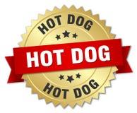 Cão quente ilustração royalty free