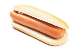 Cão quente no branco imagens de stock