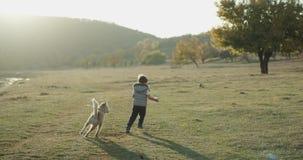 Cão ronco do bebê que joga com um menino bonito três anos velho no meio do campo, eles que passam uma boa estadia junto vídeos de arquivo