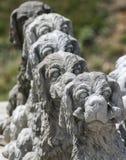 Cão Statued Fotos de Stock