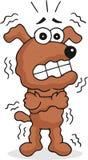 Cão tiritando ilustração do vetor