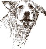Cão triste ilustração stock