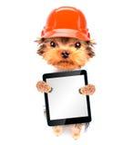 Cão vestido como o construtor com PC da tabuleta Fotos de Stock Royalty Free