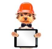 Cão vestido como o construtor com PC da tabuleta Imagens de Stock Royalty Free