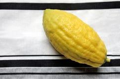 Cédrat jaune - Etrog photo stock