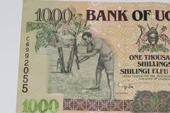Cédula da moeda de África Imagens de Stock Royalty Free
