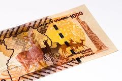 Cédula da moeda de África Imagem de Stock