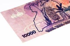 Cédula da moeda de África Foto de Stock Royalty Free