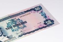 Cédula do currancy de Ámérica do Sul Imagem de Stock Royalty Free