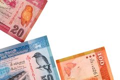 Cédulas cingalesas de 100,20,50 rupias isoladas no fundo branco com trajeto de grampeamento Foto de Stock