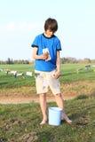 Cédulas de secagem do menino Foto de Stock