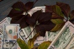 Cédulas populares, dólares em toda parte imagens de stock royalty free