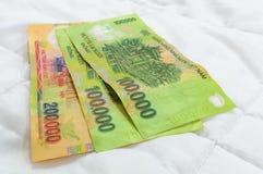 Cédulas vietnamianas do da moeda Fotografia de Stock Royalty Free