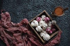 Céfiro hecho en casa de la vainilla y de la frambuesa, melcochas rosadas y blancas deliciosas Imágenes de archivo libres de regalías